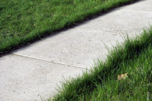 sidewalk1-large